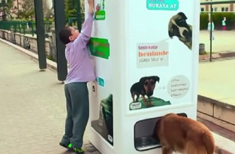 This Recycling Bin Feeds Stray Dogs In Exchange For Bottles
